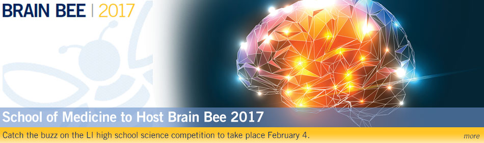 School of Medicine to Host Brain Bee 2017: Catch the buzz on the LI high school science competition to take place February 4.