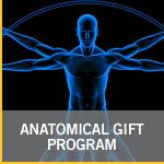 Anatomical Gift Program
